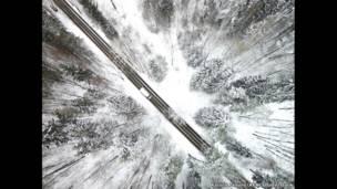 लिथुआनिया में जंगल से गुज़रती सड़क