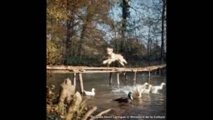 """""""لويزي""""، والتُقطت في باريس، في أكتوبر/تشرين الأول 1964"""