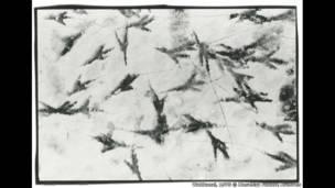 أرشيف ماساهيسا فوكاسي