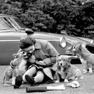 Queen with her corgis
