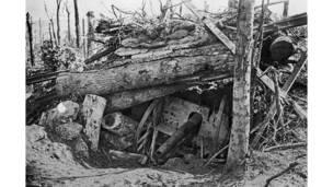 مدفع ألماني مدفون تحت أشجار مقتلعة الجذور في لونج وود خلال هجوم على سوم، الحرب العالمية الأولى.