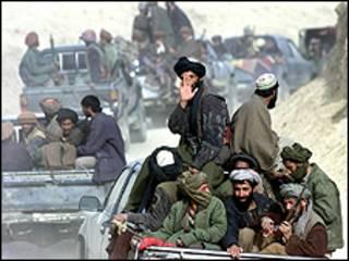 طالبان(آرشیو )