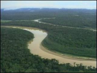 Floresta Amazônica (arquivo)