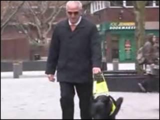 Ron, que perdeu a visão há 30 anos, anda com seu cachorro