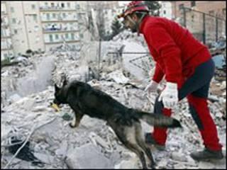 Nhân viên cứu hộ và chó săn