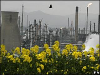 Plantas frente a una refinería, en Escocia.