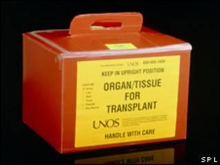 Caja de transporte de órganos para transplantes