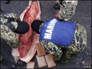 Tiburones usados por el narco