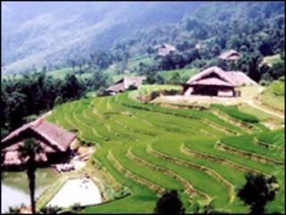 Rừng đầu nguồn ở Hà Giang