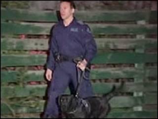Policia com cachorro participa da operação em Melbourne