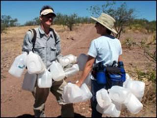 Walt Staton e outra voluntária coletam garrafas vazias para reuso e reciclagem (Foto: ONG No More Deaths)