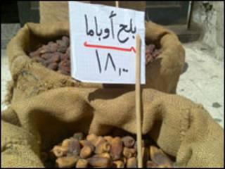 بلح في أسواق القاهرة