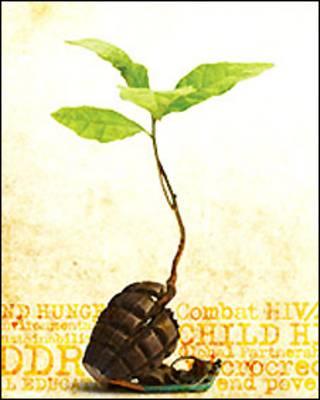 Poster/ Foto del sitio de Naciones Unidas