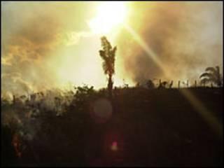Fuegos en el sureste de la Amazonía