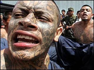 """Miembros de las pandillas juveniles llamadas """"maras"""""""