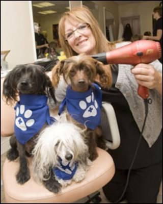杰西·南丁格尔和她的爱犬
