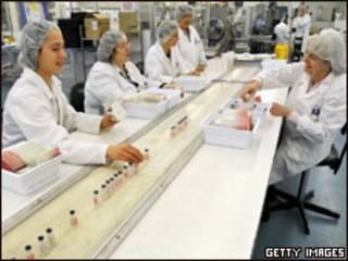 Produção de vacina contra a gripe suína na Austrália