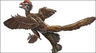 Dinosaurio emplumado (Xu Xing)