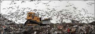 垃圾填埋場