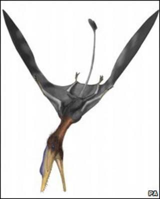 Рисунок рептилии