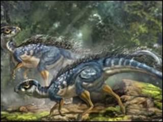 """中国化石显示恐龙可能早已""""羽化"""""""