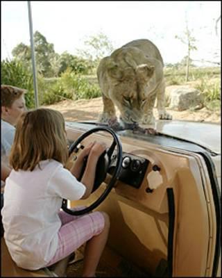 A 'jaula invisível' no zoológico de Weerribe, em Melbourne, Austrália (divulgação)