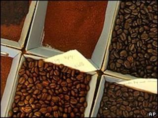 Granos de café. Foto de archivo