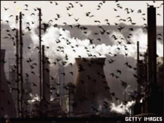 Chimeneas contaminantes