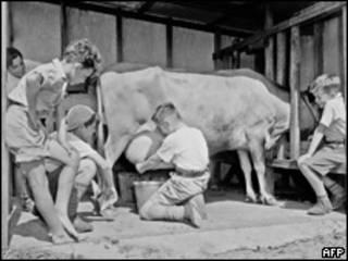 Дети доят корову