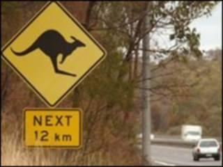 ऑस्ट्रेलिया में चिन्ह
