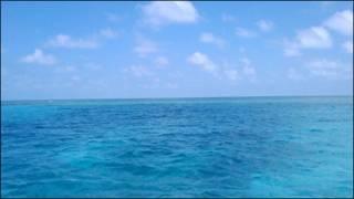 Mar del Golfo de México