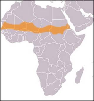 ساحل آفریقا