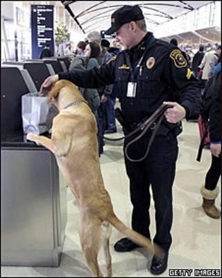 Control de seguridad en el aeropuerto de Detroit