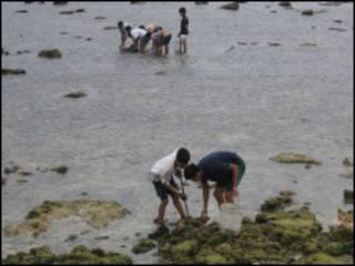 Khai thác hải sản ở Trường Sa (ảnh của VOV)