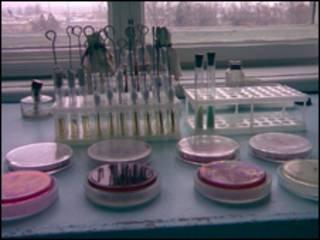 Туберкульоз в Україні