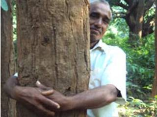 एक पेड़ॉ से चिपके विश्वनात बरद