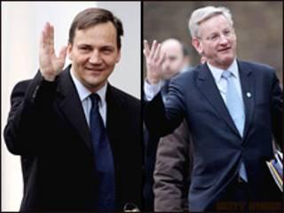 Министр иностранных дел Польши Радек Сикорский и министр иностранных дел Швеции Карл Бильдт