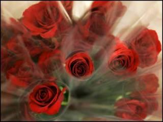 Цветы принято дарить любимым