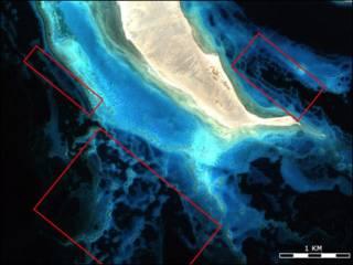 Риф Красного моря