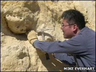 Shimada en los trabajos de excavación