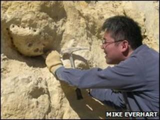Kenshu Shimada durante escavações no Kansas (foto: Mike Everhart)