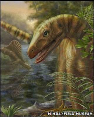 Asilisauros kongwe были мирным созданием и кушал траву
