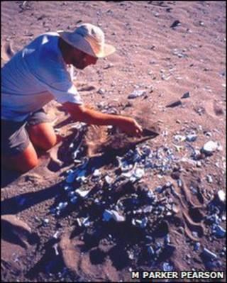 Hallazgo de cascarones fosilizados (FOTO: M. Parker Pearson)