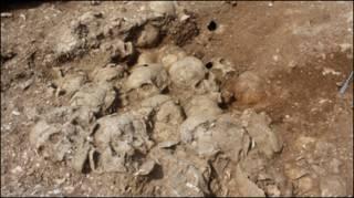 Imagem da cova com 51 caveiras em Dorset (Oxford Archaeology/Dorset County Council/NERC)