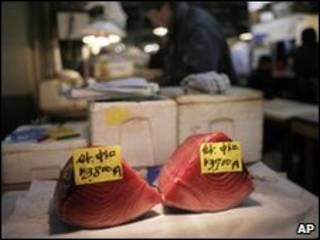 Pedaços de atum-rabilho à venda em Tóquio