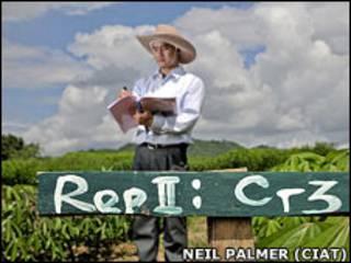 Proyecto de investigación agrícola