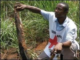 Волонет Красного Креста