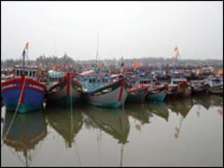 Thuyền cá của ngư dân Bình Sơn (ảnh báo Thanh Niên)