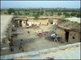 مزرعة في اقليم البنجاب