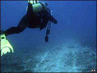 Experto analizando los daños en la Gran Barrera de Coral australiana